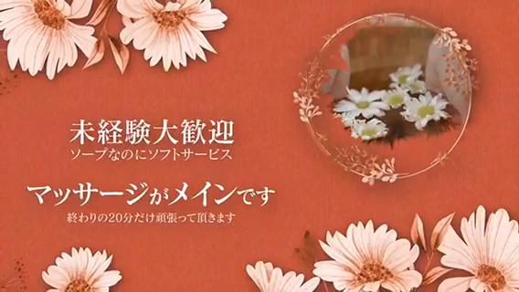 SakuraSpaのお仕事解説動画