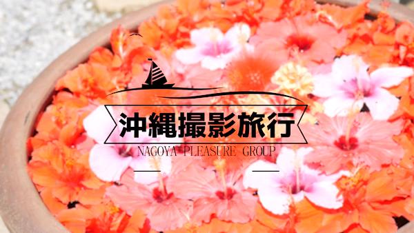 シャブール 名古屋店の求人動画