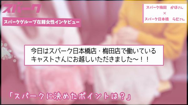 スパーク 日本橋店のお仕事解説動画