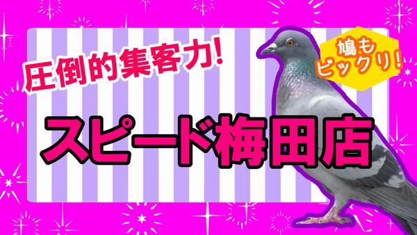 スピード 梅田店のお仕事解説動画