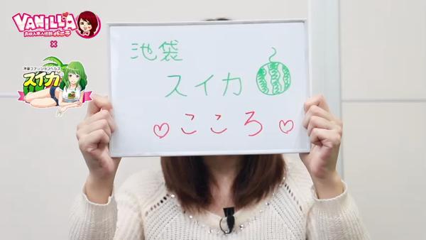 スイカのバニキシャ(女の子)動画