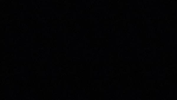 Sweetのバニキシャ(スタッフ)動画