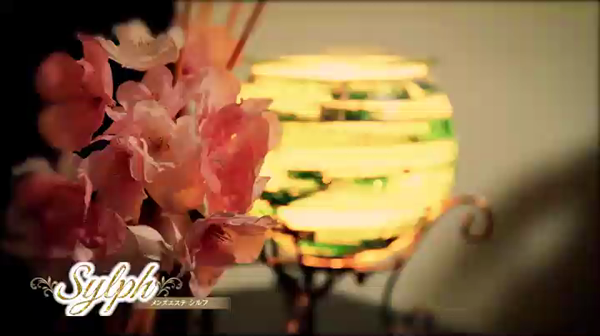 Sylph(シルフ)の求人動画