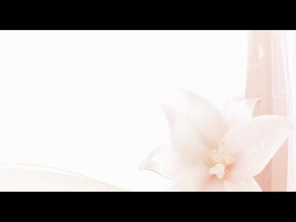 天使のゆびさき(カサブランカグループ)の求人動画