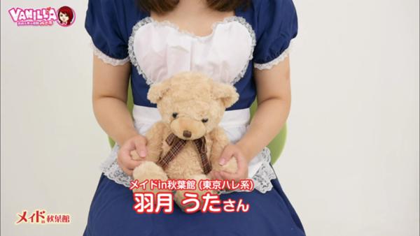 メイドin秋葉館 (東京ハレ系)のバニキシャ(女の子)動画