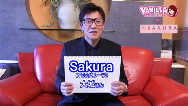 Sakura YESグループのバニキシャ(スタッフ)動画