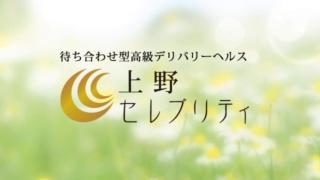 上野セレブリティの求人動画