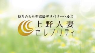 上野人妻セレブリティの求人動画