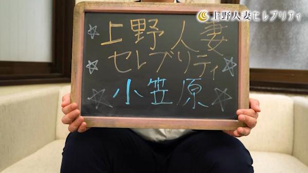 上野人妻セレブリティ(ユメオトグループ)のお仕事解説動画