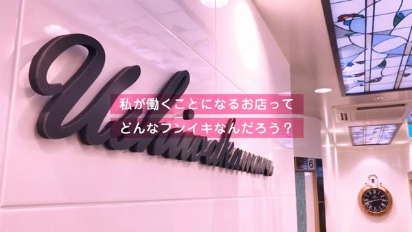 牛若丸のお仕事解説動画