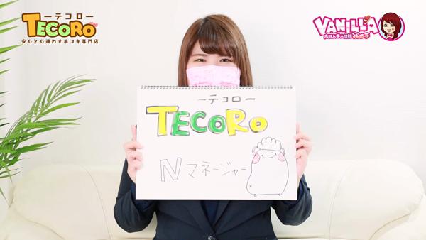 TECOROのバニキシャ(スタッフ)動画