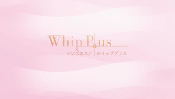 Whip Plusのお仕事解説動画