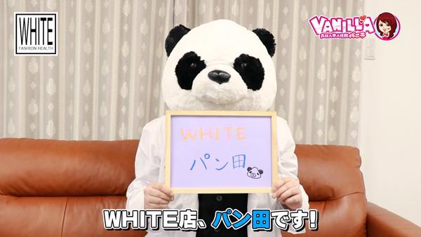 WHITE YESグループのスタッフによるお仕事紹介動画