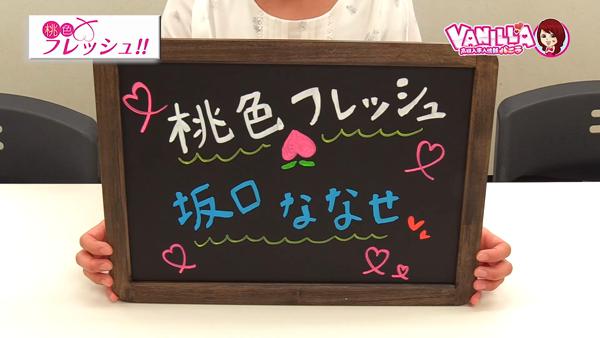 桃色フレッシュ!!(横浜ハレ系)のバニキシャ(女の子)動画